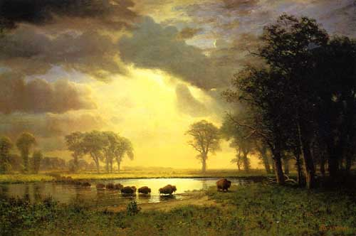 20277 Albert Bierstadt Paintings oil paintings for sale