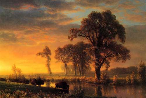 20286 Albert Bierstadt Paintings oil paintings for sale