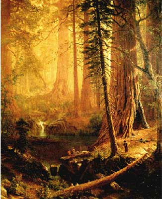 2427 Albert Bierstadt Paintings oil paintings for sale