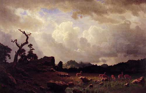 2467 Albert Bierstadt Paintings oil paintings for sale