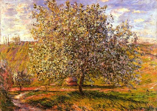 41478 Claude Monet Paintings oil paintings for sale