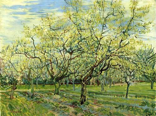 41580 Van Gogh Paintings oil paintings for sale