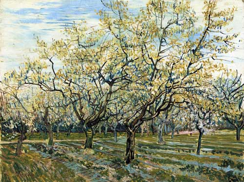 Oil Paintings Production:Vincent Van Gogh - The White Orchard hspace=