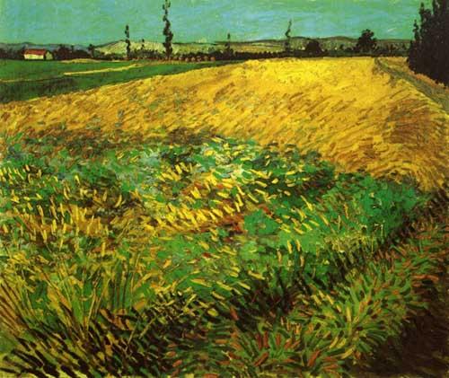 41637 Van Gogh Paintings oil paintings for sale
