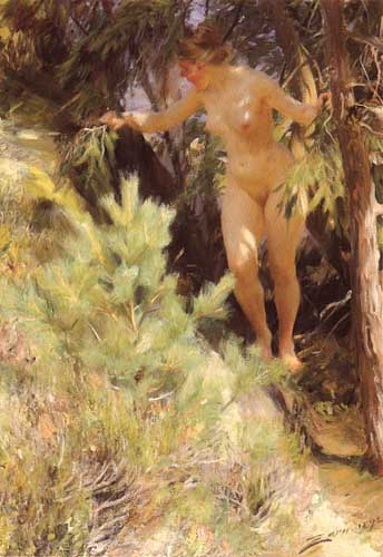45528 Anders Zorn Paintings oil paintings for sale