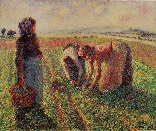 45677 Camille Pissarro Paintings oil paintings for sale