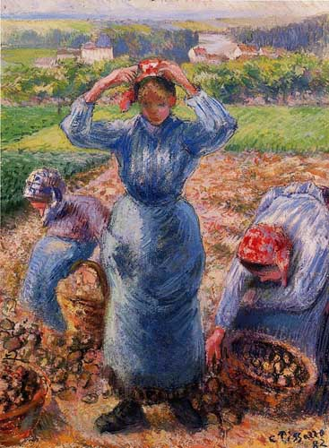 45727 Camille Pissarro Paintings oil paintings for sale