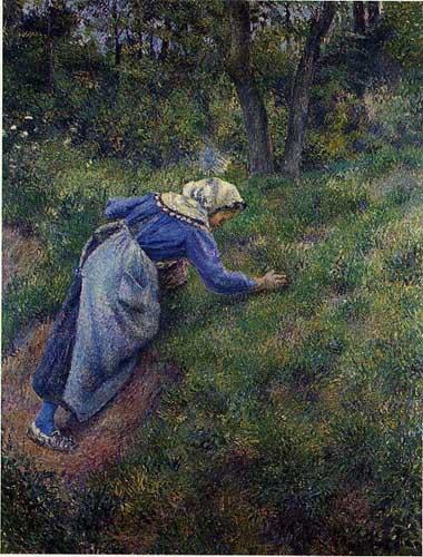 45795 Camille Pissarro Paintings oil paintings for sale