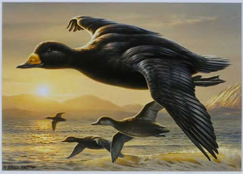 Oil Paintings Production:Flying over the Sea hspace=