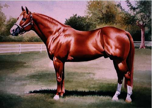 Painting Code#5445-Red Horse