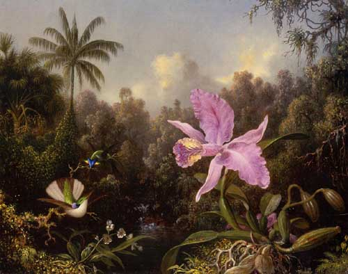 Oil Paintings Production:Martin Johnson Heade - Orchid and Two Hummingburds hspace=