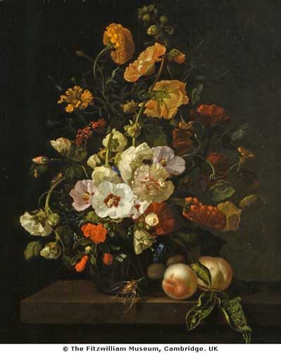Oil Paintings Production:Rachel Ruysch - A Vase of Flowers hspace=